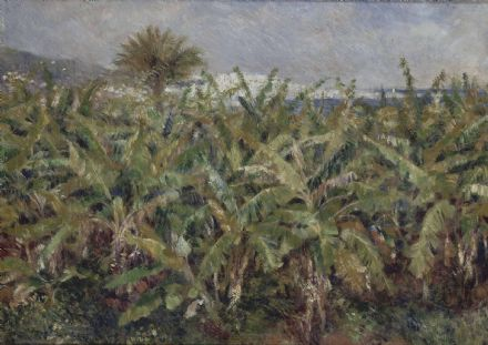 Renoir, Pierre Auguste: Field of Banana Trees. Fine Art Print/Poster. Sizes: A4/A3/A2/A1 (004111)
